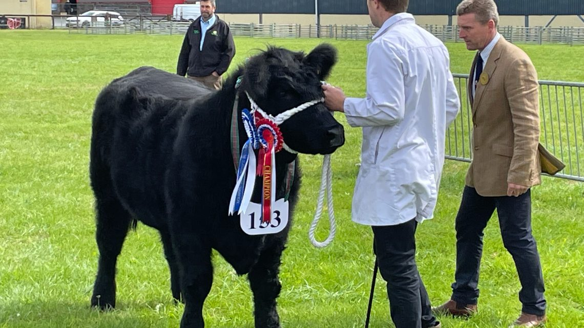 Pembrokeshire County Show 2021